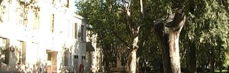 """El Observatorio de DDHH de la UNRC manifestó su """"preocupación"""" por el área de Salud Mental"""