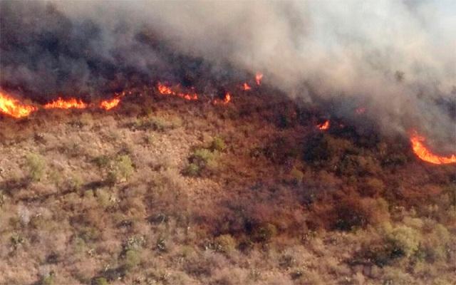 Combaten frente de incendio de 12 kilómetros — Guasapampa