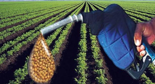 Estados Unidos hizo oficial el arancel de 72% al biodiésel argentino
