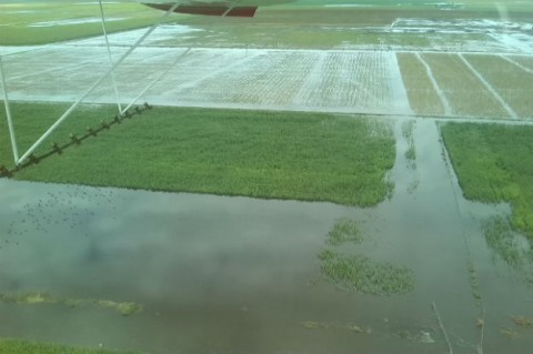 inundaciones-dos