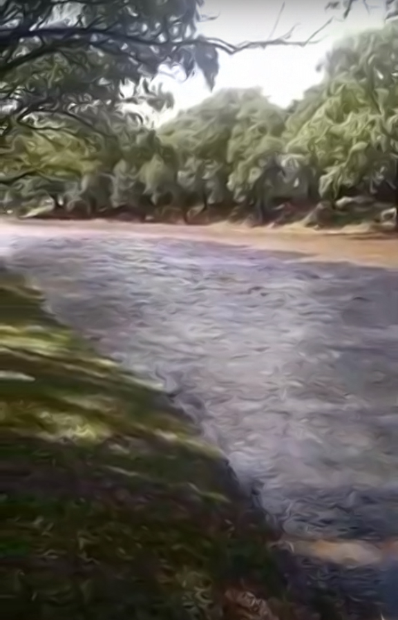 Con la última lluvia creció el río de Alpa Corral - Telediario Digital